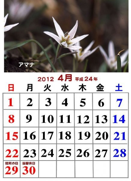 2012年度フォトカレンダー