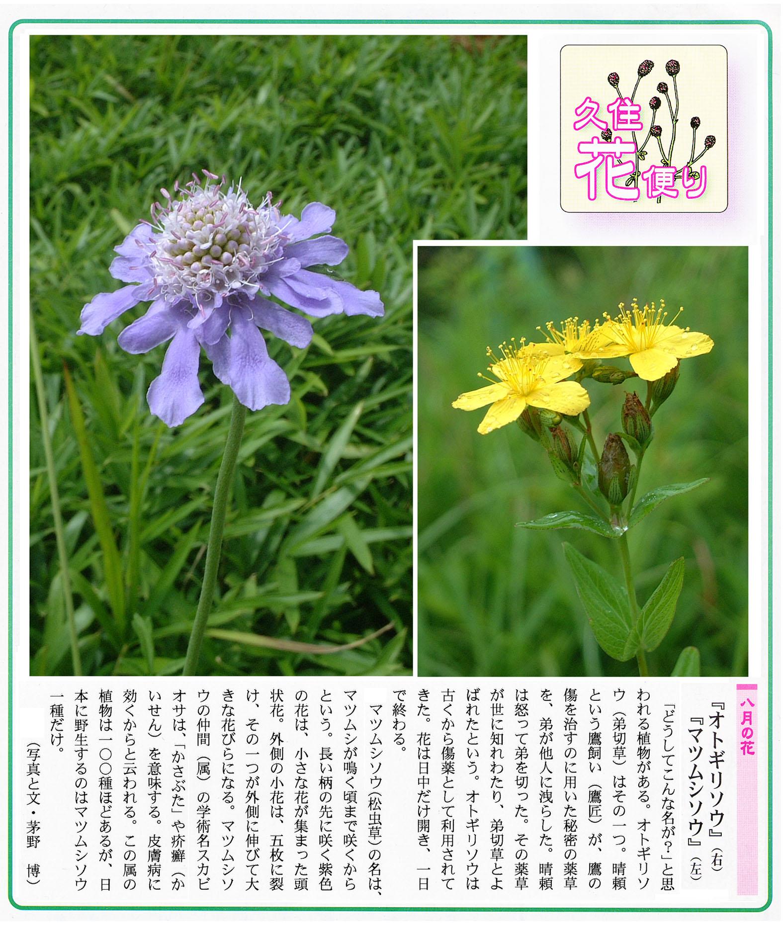 久住町広報誌掲載8月号