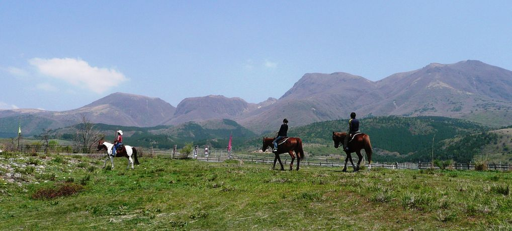 高原には乗馬が似合います。