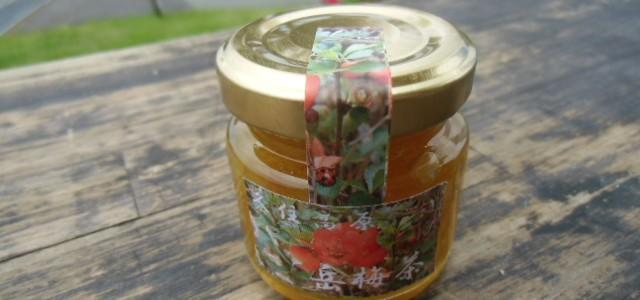 ついに久住の特産「岳梅茶」開発