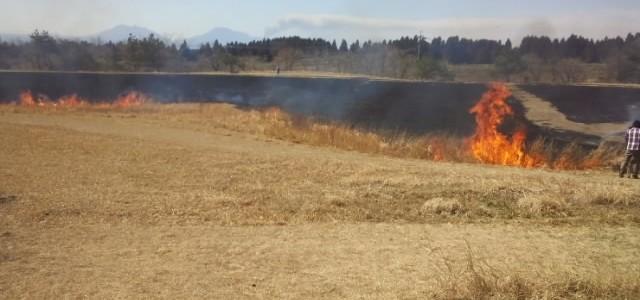 阿蘇の噴煙、くじゅうの野焼き