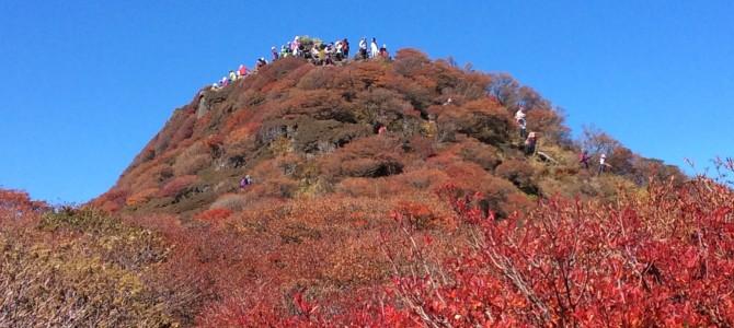 久住連山頂の紅葉今年ン最高