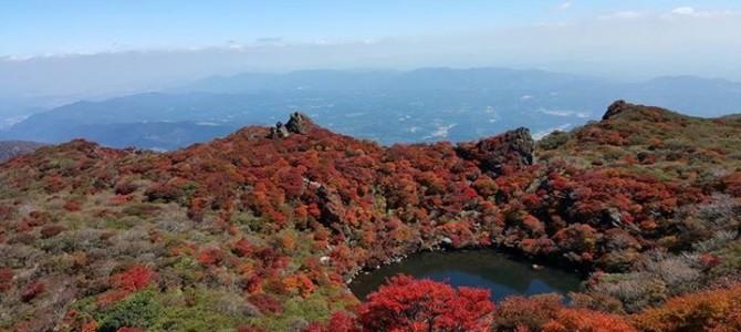 秋のかおり、くじゅう高原.com
