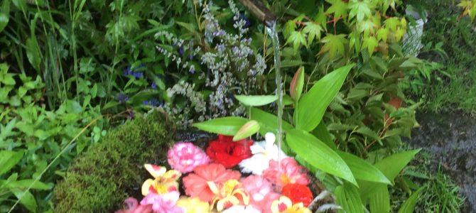 梅雨にスポット、雨やどりはフラワーズヴァレー